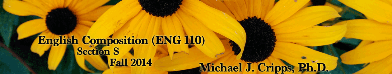 Fall 2014 ENG110S – English Composition
