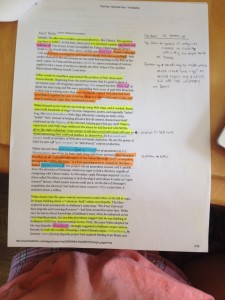 Poe Annotations - Renee