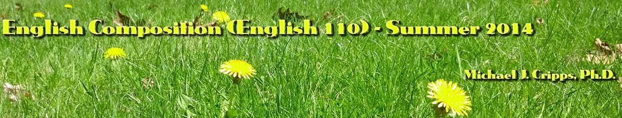 ENG 110 O – Summer 2014