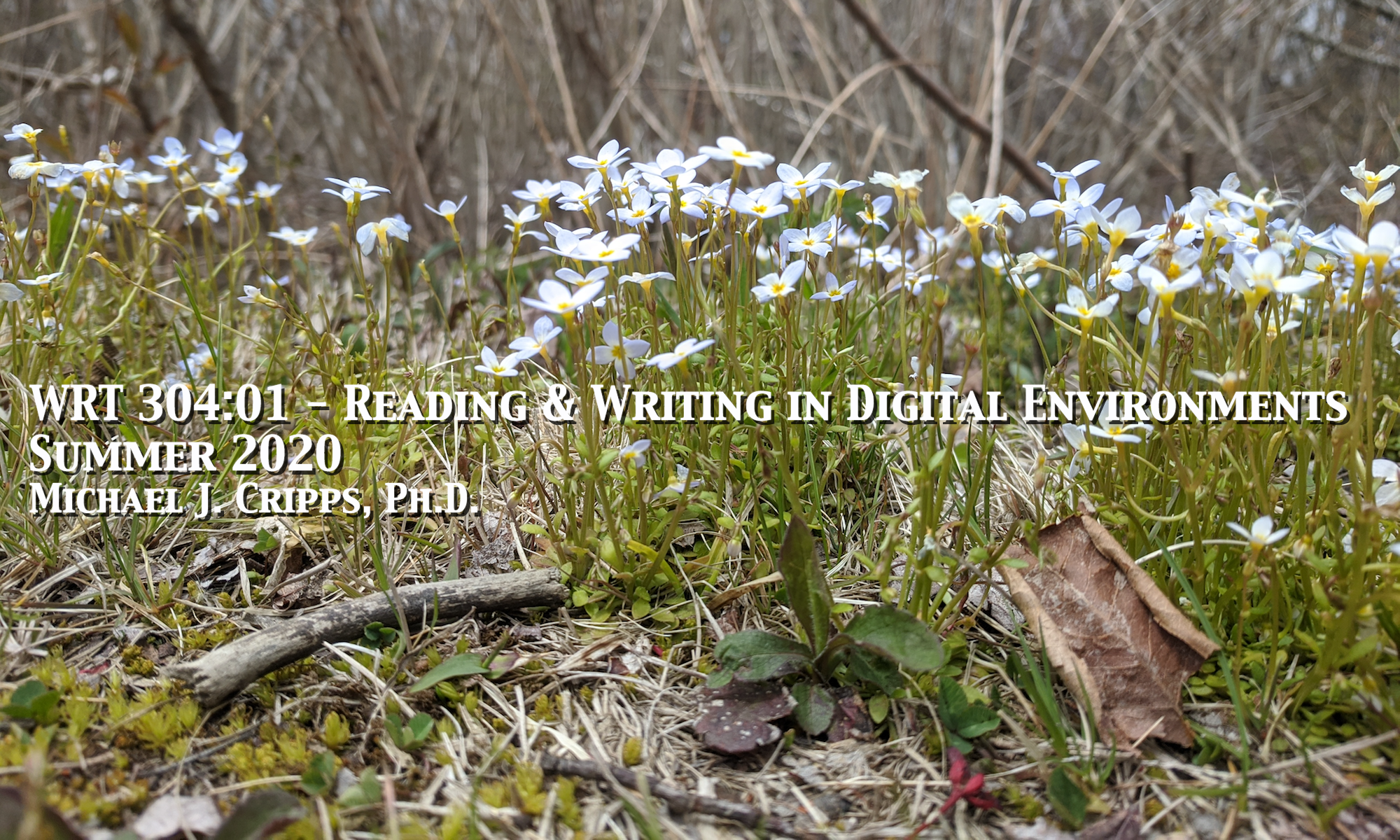 Writing 304 - Reading and Writing in Digital Environments
