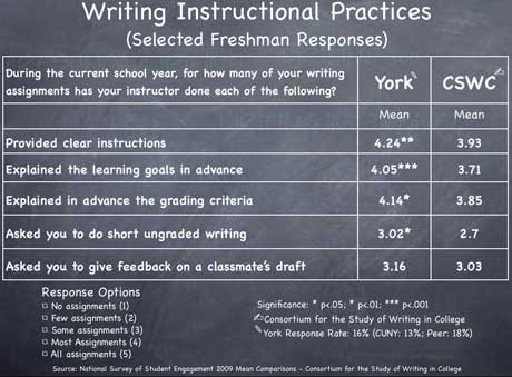 Instructional Practices Mean Scores