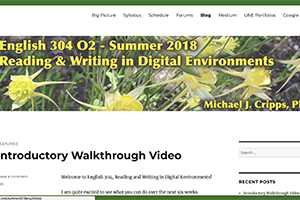 Image of course website for ENG 304, Summer II, 2018.