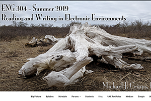 Screenshot of website for ENG 110 B, Spring 2019.